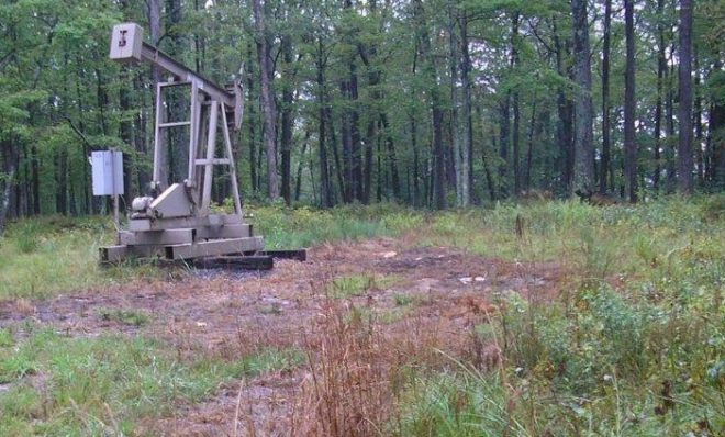 Dead vegetation around a conventional well indicating a possible brine spill.