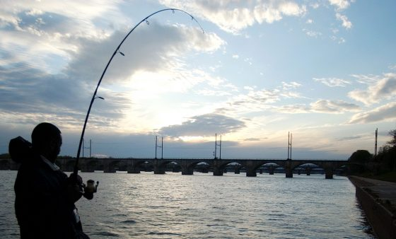 A fisherman along the banks of the Susquehanna River. Two senior state environmental officials say there is no link between gas drilling and problems with the river's smallmouth bass population.