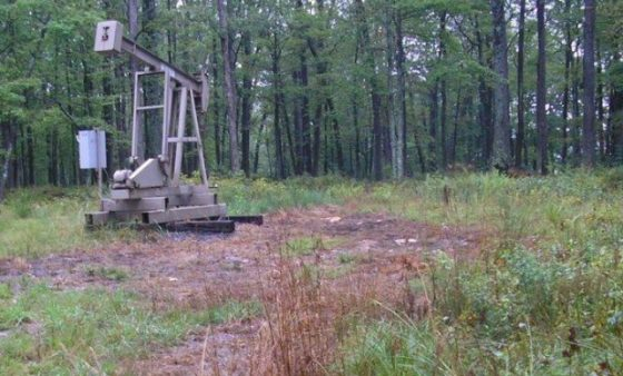 Dead vegetation around a conventional well site in Warren County indicates a possible brine spill.