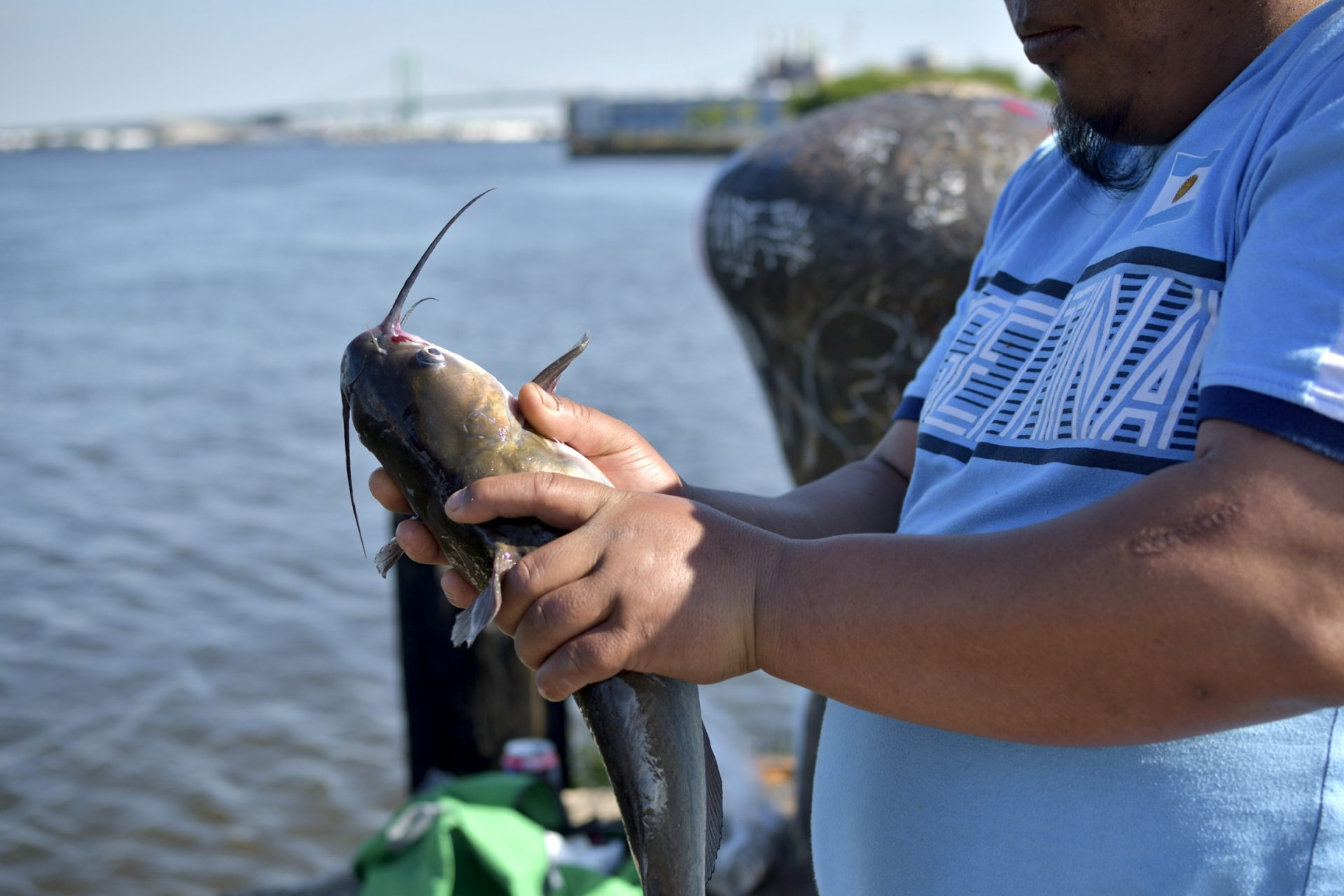 New Jersey issues first advisories for consumption of fish
