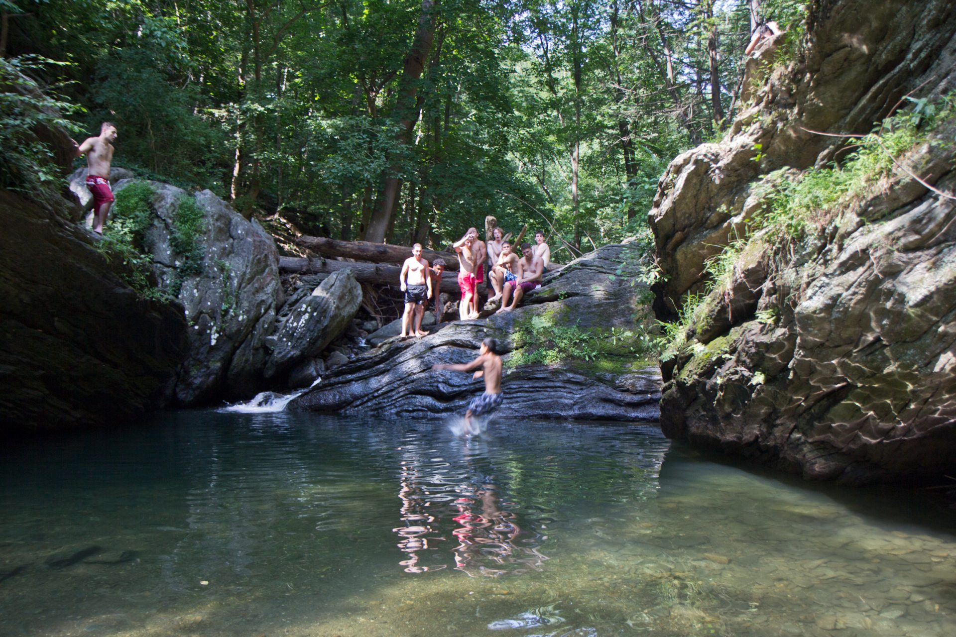 Swimming in the Wissahickon isn't so idyllic: There's poop in it