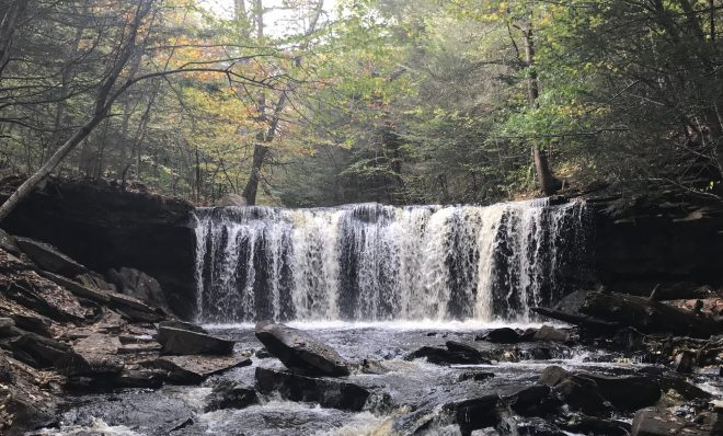 A waterfall in Ricketts Glen State Park.