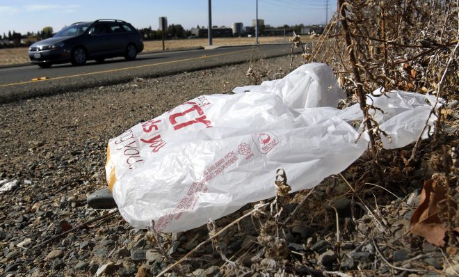 FILE PHOTO:  A plastic bag sits along a roadside in Sacramento, Calif.