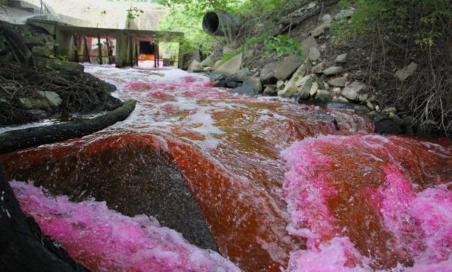 Red dye is released from the Kent County wastewater treatment plant into The Gut, a tributary of the Murderkill River which runs into the Delaware Bay.