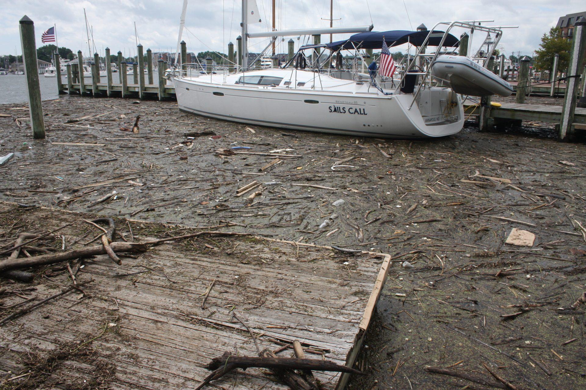 Chesapeake Bay Clean Water Goals