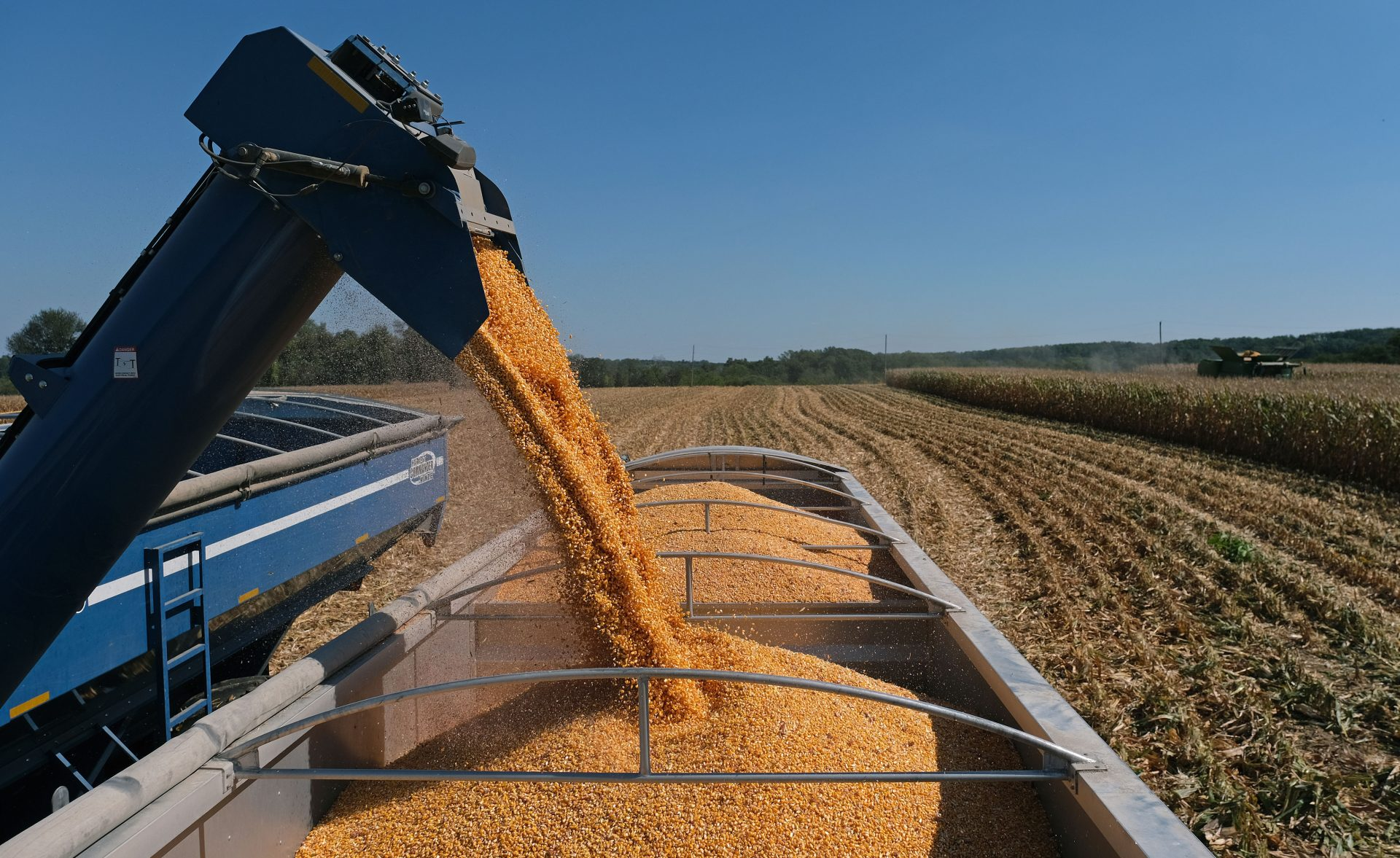Harvested corn is unloaded into a truck Sept. 25, 2019, at Cairns Family Farm in Sadsbury Township, Pennsylvania.