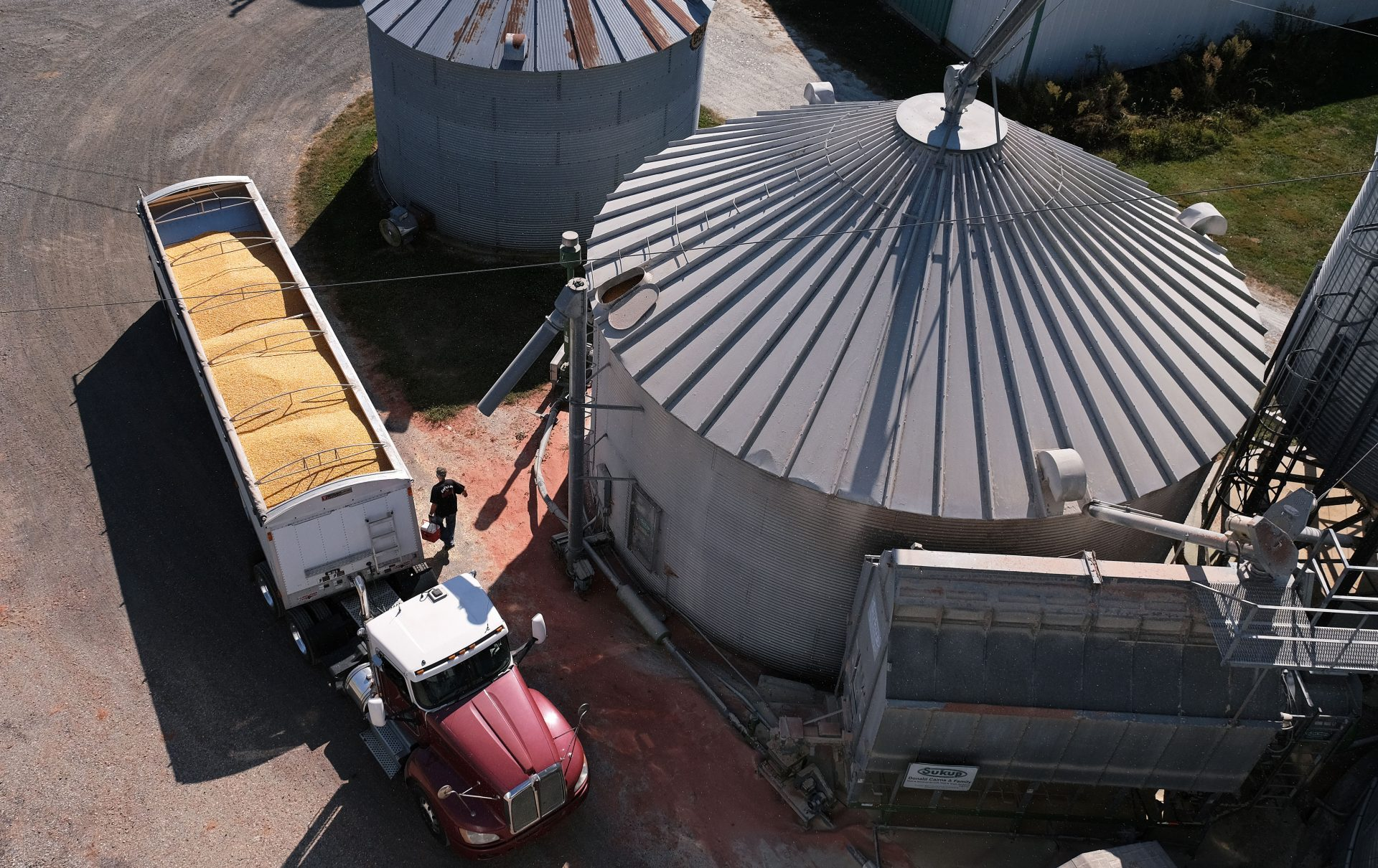 Soybeans grow on land farmed by grain farmer Mike Braucher on Sept. 20, 2019, at Braucher Farms in Centre Township, Pennsylvania.