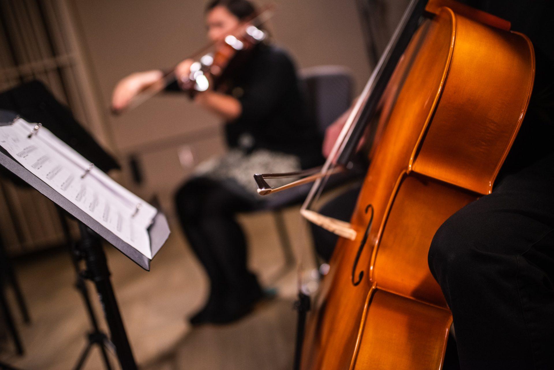 Close-up of a cello