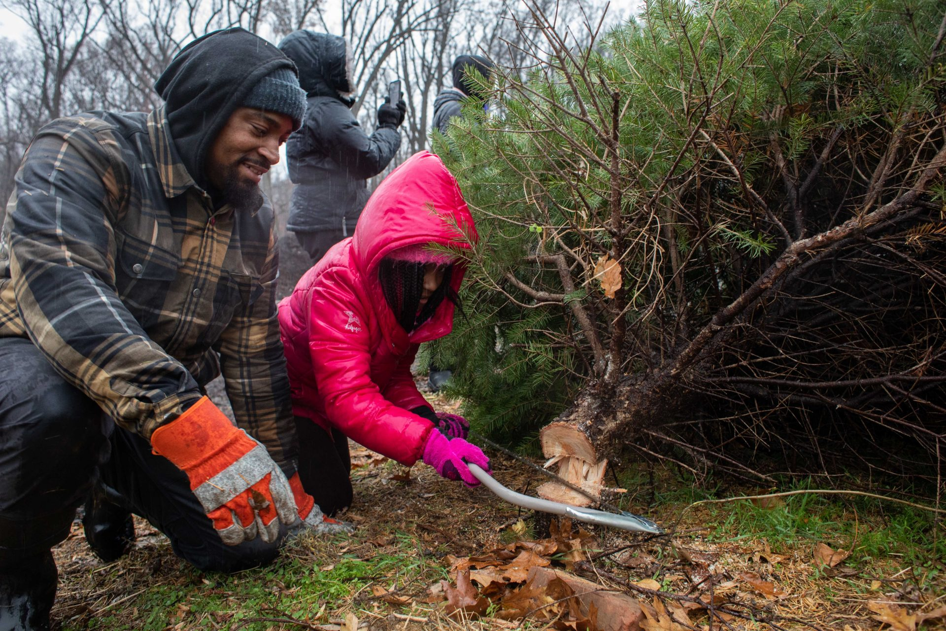 Gabbi Lynard (right), age 9, of Cherry Hill, New Jersey helps her father Anthony Lynard (left) cut down their Christmas tree at Linvilla Orchards in Media, Pennsylvania on Sunday.