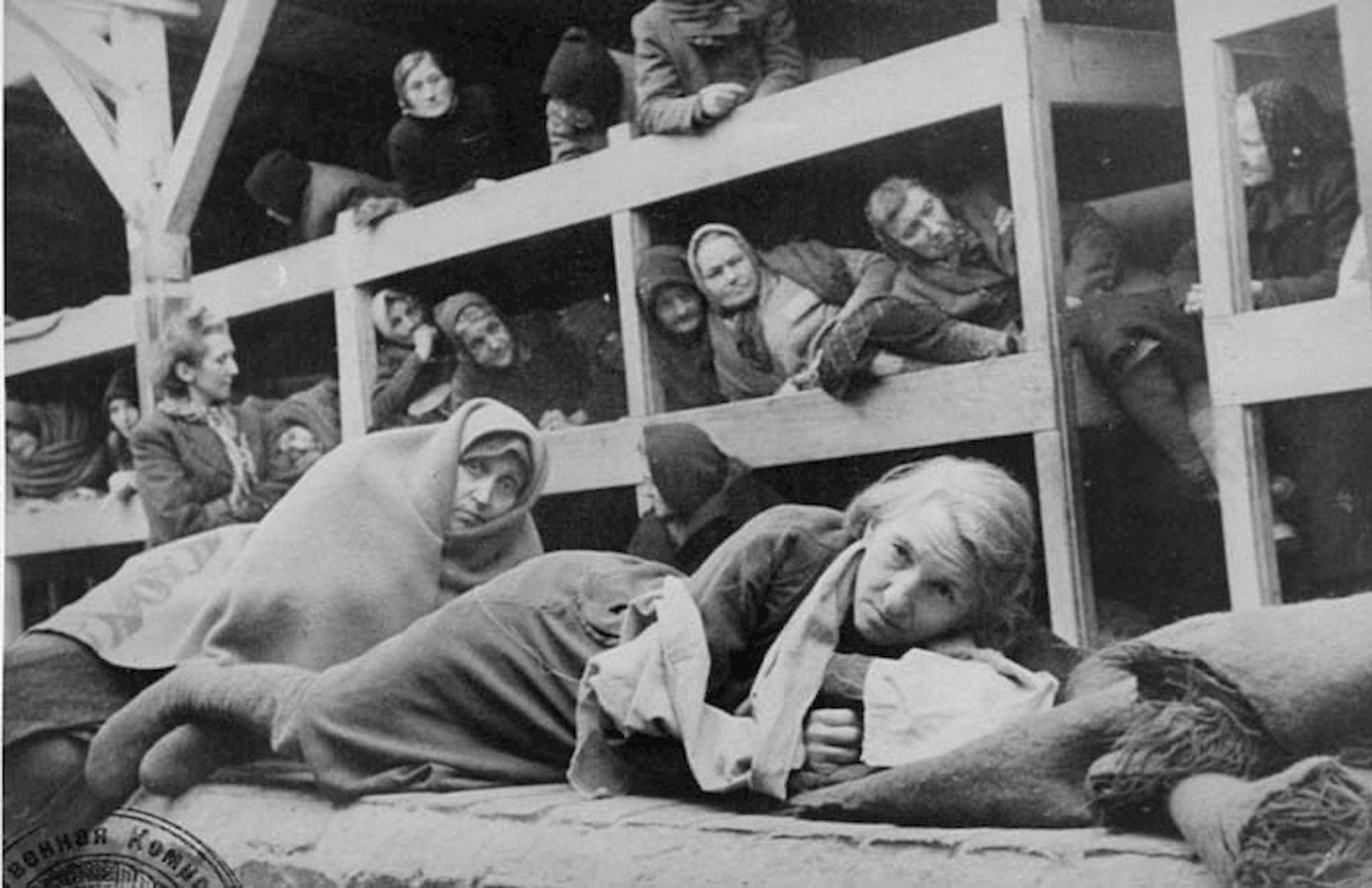 Auschwitz Stream