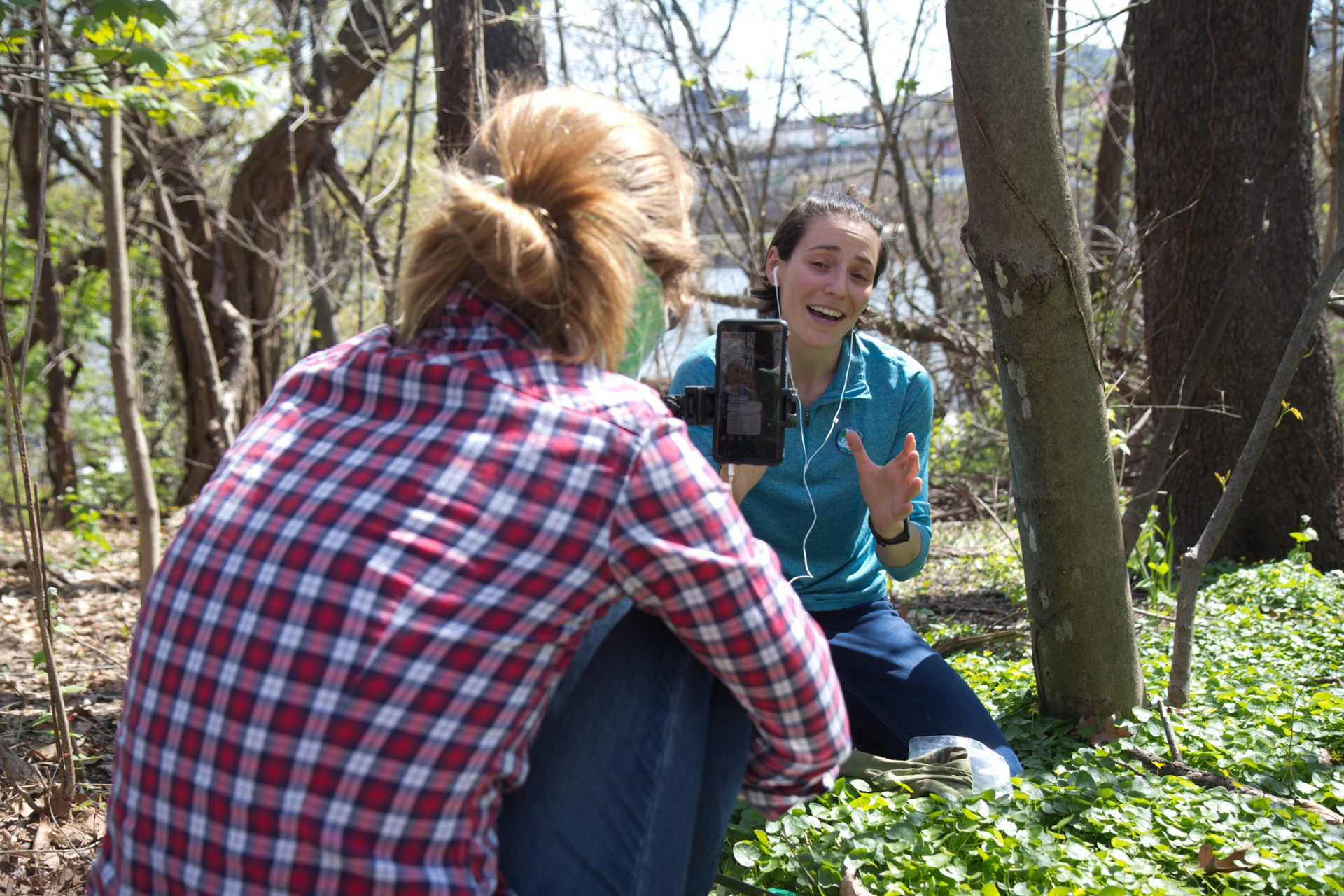 Rachel Valletta, Director of the Climate and Urban Systems Partnership at the Franklin Institute and her partner Amy Bond, live streamed an instructional video to show people how to remove the eggs of the spotted lantern fly from vulnerable trees.