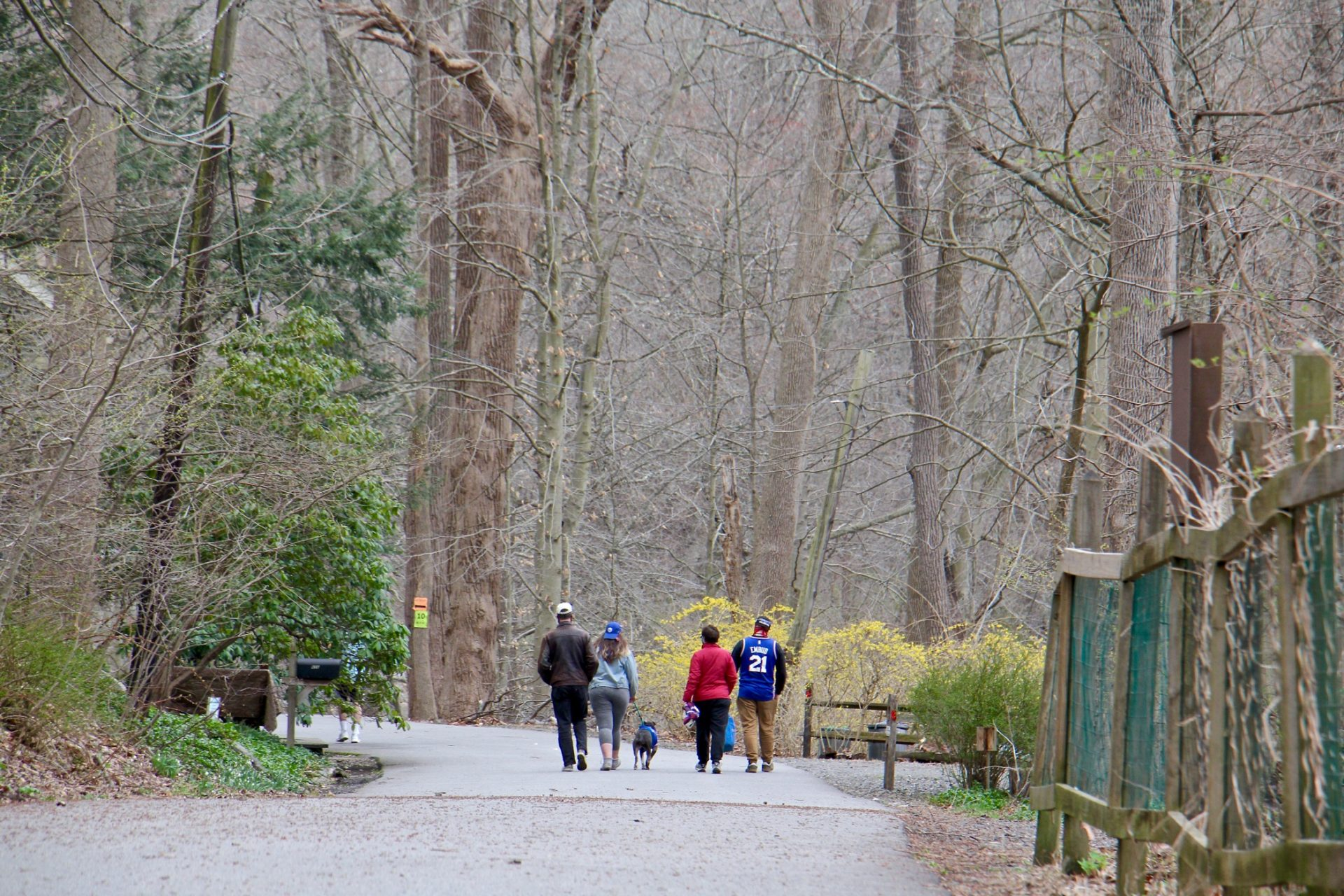 Hikers in Ridley State Park in Media, Pa.
