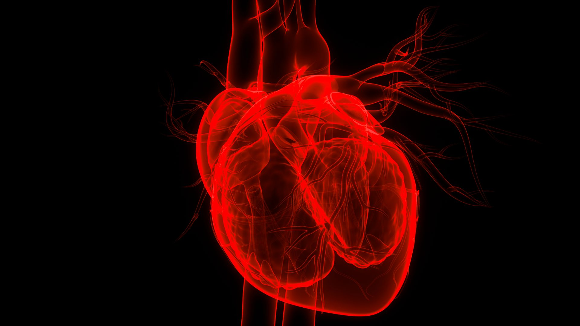 Heart disease is still a killer. Here's how to reverse it | WITF