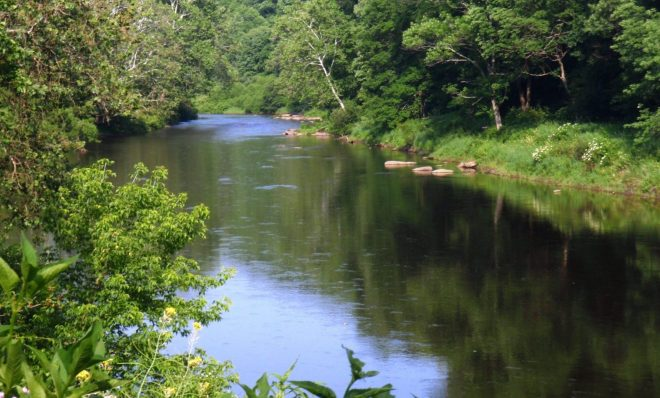 A stretch of land along the Clarion River that will now be part of the Allegheny National Forest.